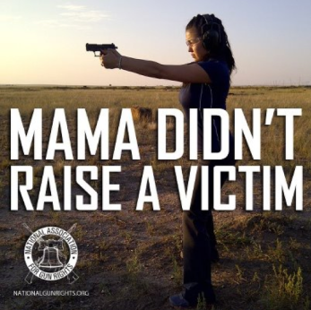 gun ownership and safety